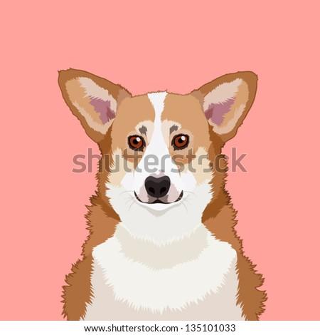 Welsh corgi pembroke, The buddy dog