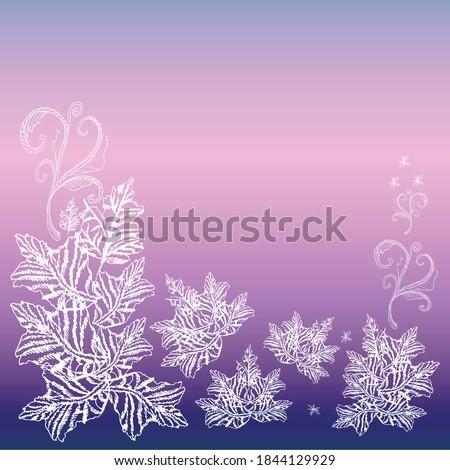 winter vector nature