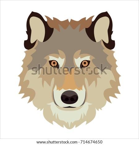 wolf's head vector illustration