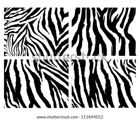4 zebra pattern vector