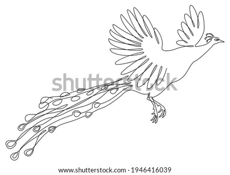 A beautiful peacock is flying. A bird with a lush tail in a modern one-line style. Solid line, outline for decor, posters, stickers, logo. Vector illustration. Foto stock ©