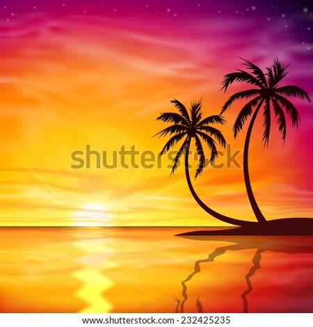 a beautiful sunset  sunrise