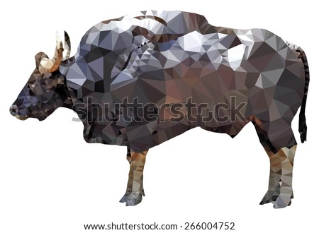 a big muscular gaur bull  low