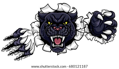 A black panther angry animal sports mascot breaking through the background with its claws