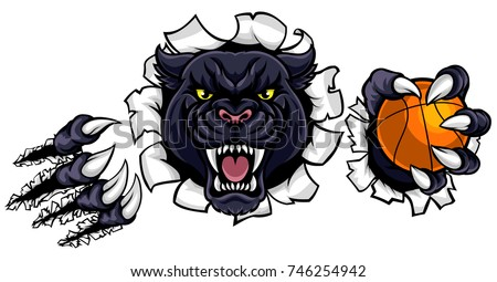 A black panther angry animal sports mascot holding a basketball ball and breaking through the background with its claws
