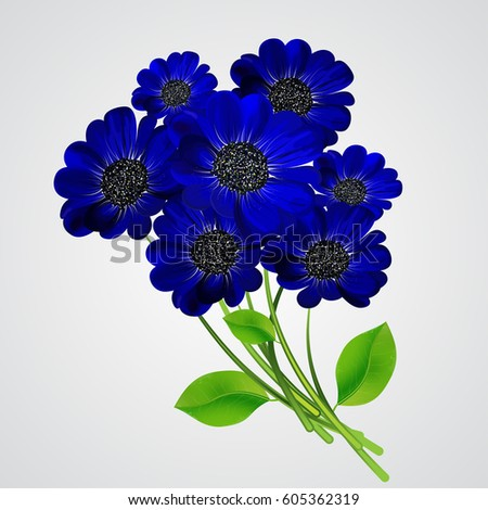 a bouquet of blue flowers