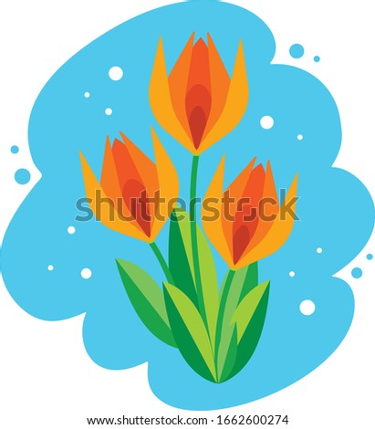 a bouquet of three tulips in a