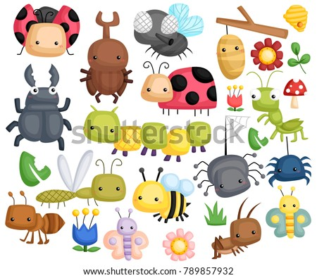 a bug illustration with many