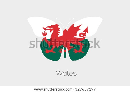 a butterfly with the flag of