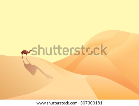 A camel and desert