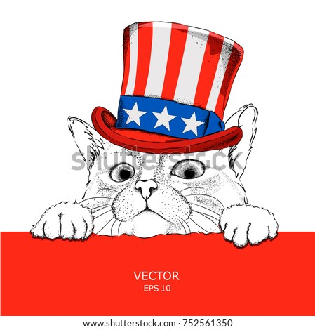 A Cat In Old American Hat With A Flag National Symbols Of The Usa