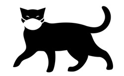 A cat wearing medical face mask for protection from catching a virus, black and white silhouette vector illustration.