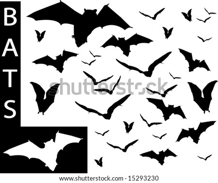A collection of Bat silhouettes-Check out my portfolio for other collections.