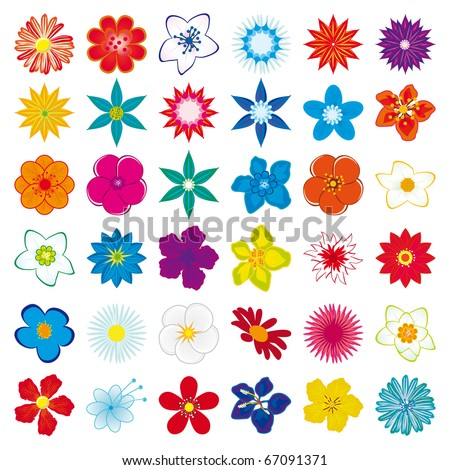 A collection of flowers for the design. Vector illustration