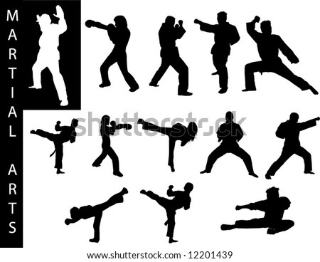 a collection of martial art