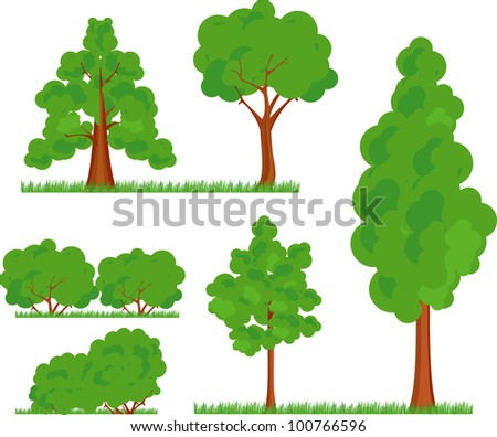 a collection of various types and forms of trees bushes grass on a white background  in a cartoon effect