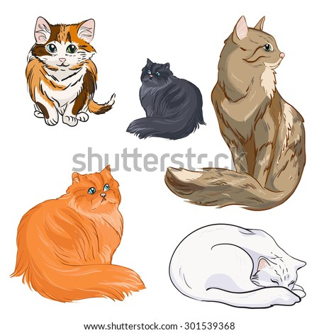 a colored set of cats