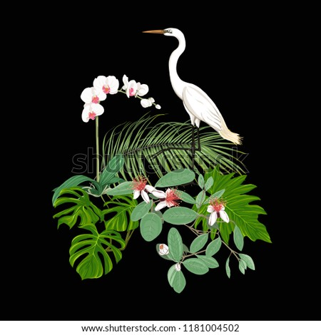 a composition of tropical
