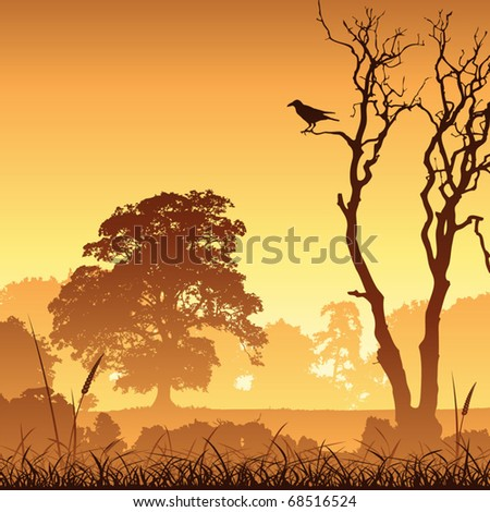A Country Meadow Landscape with Trees and Bird