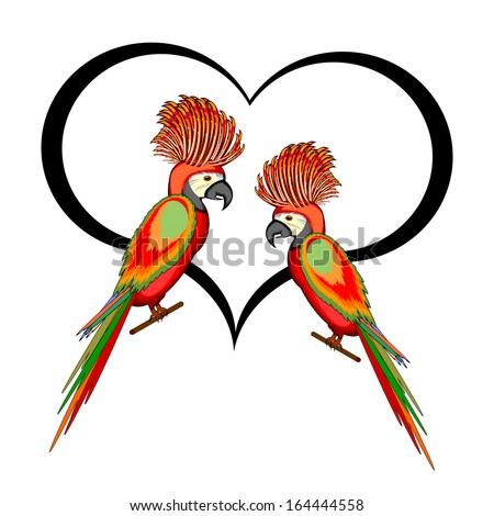A couple of macaw parrots with a heart. Vector-art illustration isolated on a white background