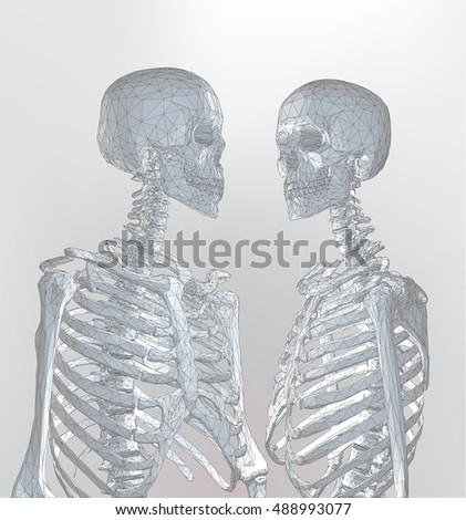 a couple of polygonal skeleton