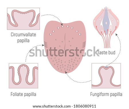 a cross sectional view of the