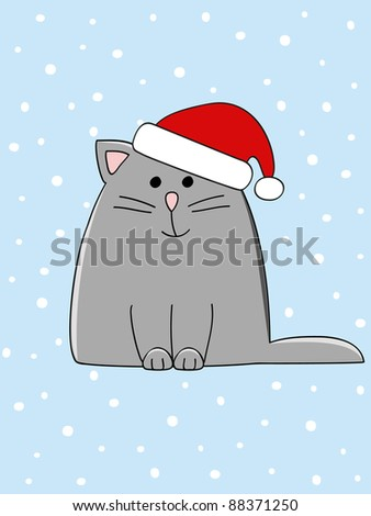 a cute grey cat with a