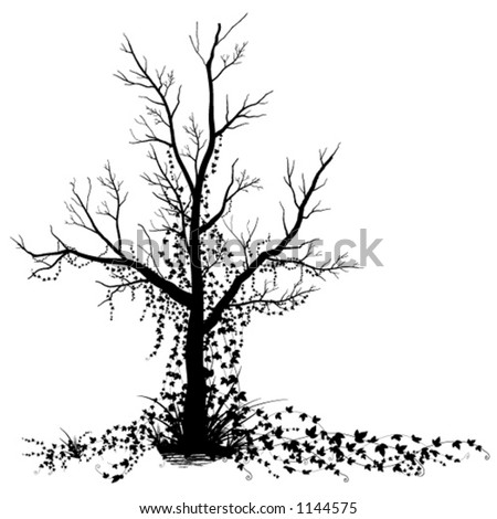 stock vector : A dead tree covered in vines