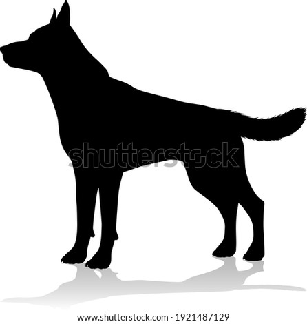 A detailed animal silhouette of a pet dog Stock photo ©