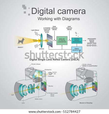 A digital single-lens reflex camera is a digital camera that combines the optics and the mechanisms of a single-lens reflex camera with a digital imaging sensor, as opposed to photographic film.