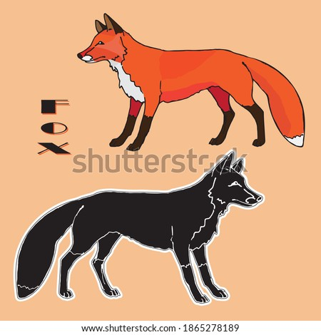 a drawn Fox, two isolated images, linear and silhouette, color and black on a orange background, for decoration and stickers.