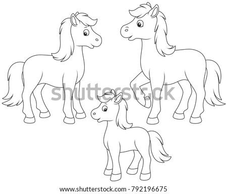 Coloring Book Animals Vector