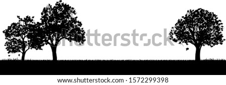 A field of grass or park and trees in silhouette background design element Stock photo ©
