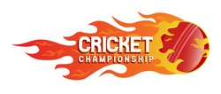 A flaming Cricket Championship Logo, Mnemonic, Symbol, Icon, Banner or Poster Design - Vector, Illustration