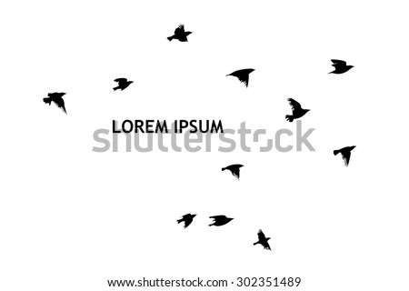 A flock of flying birds. starlings. vector