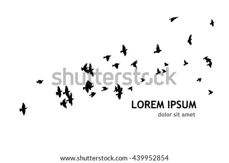 Shutterstock A flock of flying birds. Vector