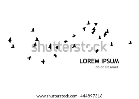a flock of flying birds vector