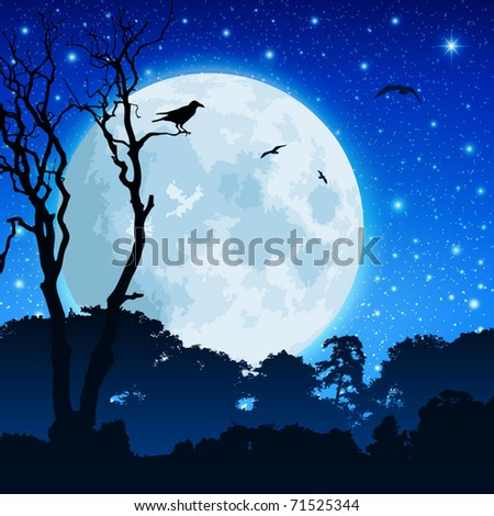 a forest landscape with moon