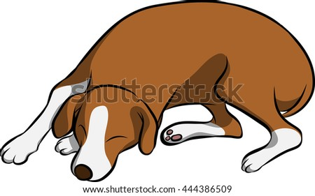a foxhound sleeping