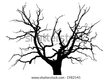 dead tree tattoo. victoria beckham star tattoo