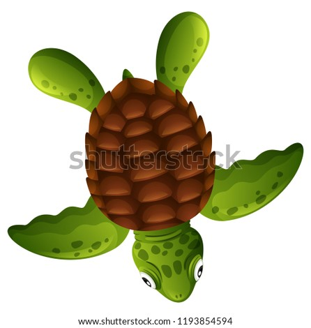 A green sea turtle on white background illustration