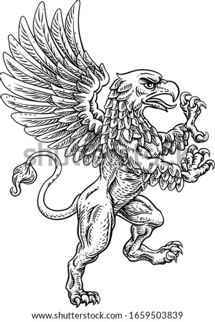 A griffin also known as a gryphon or griffon with lion body, wings and eagle head. Rampant standing on hind legs coat of arms crest mascot  Stockfoto ©