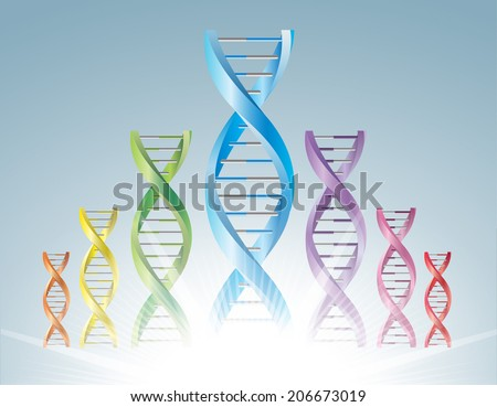 A group of DNA