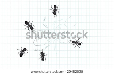 A group of worker ants inspecting a drawing of a large worker ant.