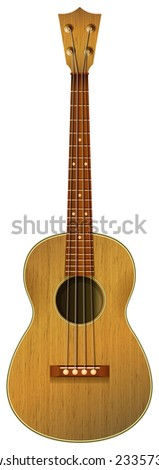 a guitar on a white background