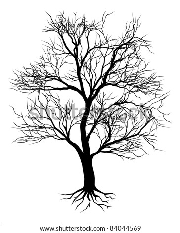 A hand drawn old tree silhouette illustration