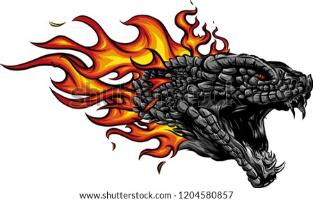 Stock Photo a head of the Dragon in fire with flames