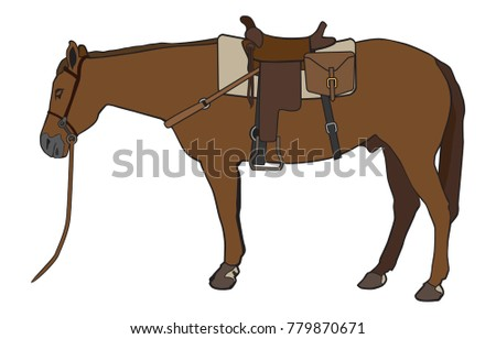 a horse is all saddled up and
