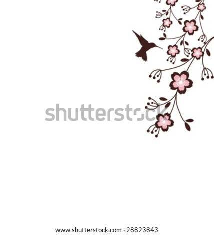 A hummingbird and cherry blossom Background with copy-space