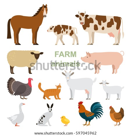 A large set of animals and birds with a farm in a cartoon style. Flat vector illustration isolated on white background